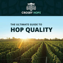 the-ultimate-guide-to-hop-quality-cover