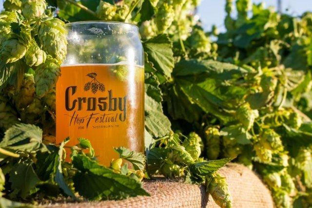 Crosby-Hop-Festival-Glass